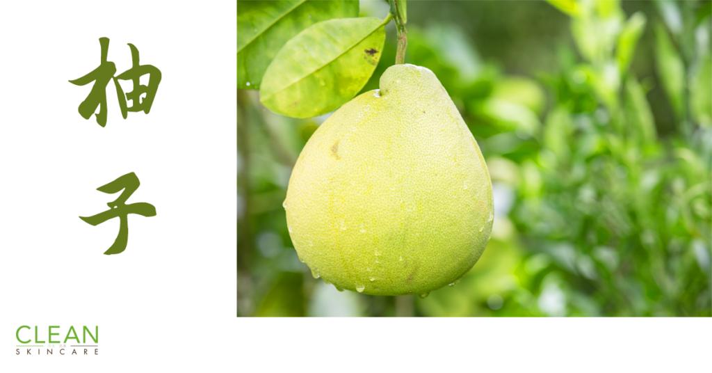 CLEAN Blog - 柚子既營養