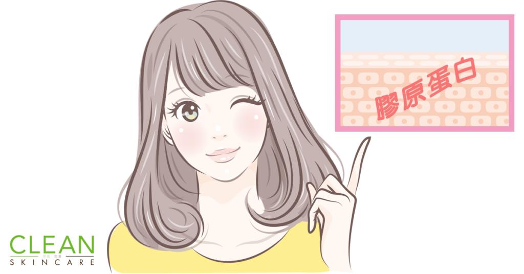 CLEAN Blog - 要收毛孔就要增加膠原?