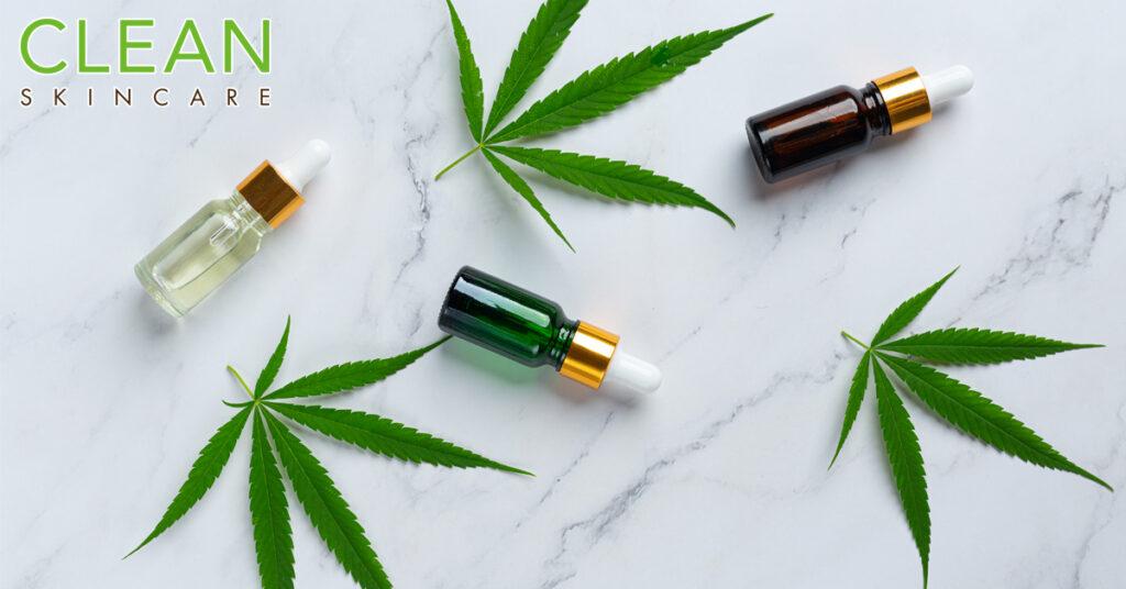 CLEAN Blog - 大麻素(Cannabinoid)係咩黎?